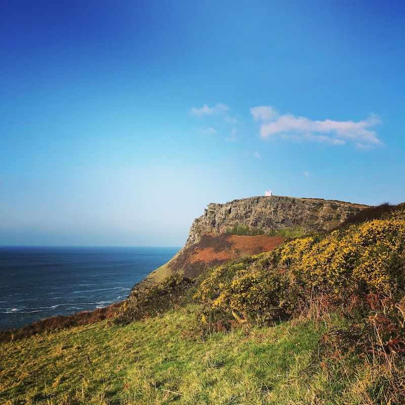 Tintagel Coast Walk - Cornwall - Avalon Guest House Newquay - avalonguesthousenewquay.co.uk small