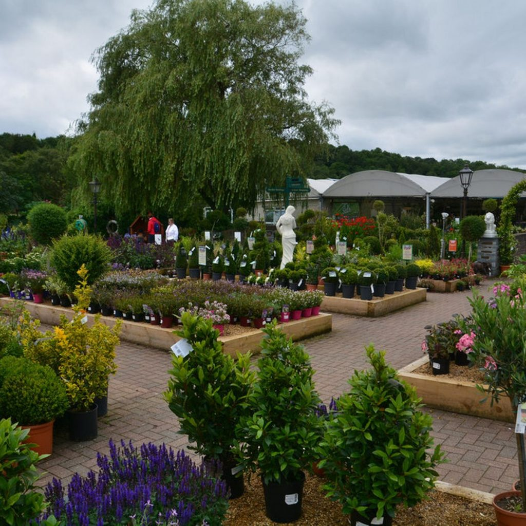 Newquay Garden Centre- A store With Something For Everyone - Avalon Guest House - avalonguesthousenewquay.co.uk